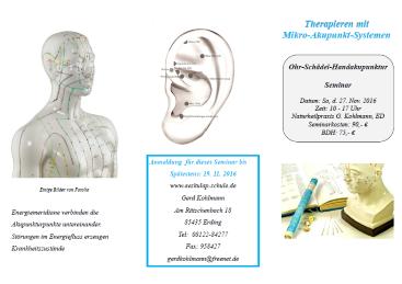 Therapieren mit Mikro-Akupunkt-Systemen